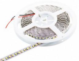 WE LED páska 5m | 120ks/m | 3528 | 9.6W/m | 12V DC | 6500K - studená bílá