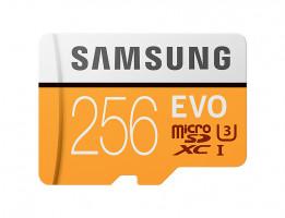 Samsung EVO microSDXC 256GB UHS-I U3 [Zápis 90MB/s Čtení 100MB/s]