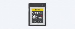 Sony 128GB CEBG128