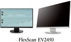 EIZO FlexScan EV2450-GY - LED monitor - 23.8