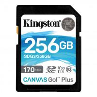 Kingston Canvas Go! Plus - 256 GB - SDXC UHS-I