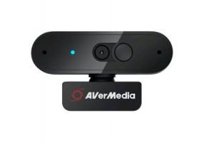 AVerMedia PW310P