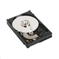 Dell  - Pevný disk 1TB 7.2K RPM NEAR-LINE (400-25619)