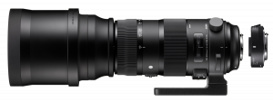 Sigma 5,0-6,3/150-600 OS C/AF HSM Sports + TC-1401