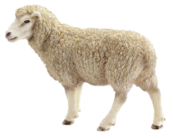 Schleich Farm Life 13743 Ovce