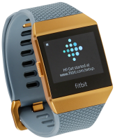 Fitbit Ionic grey/copper - Fitness hodinky