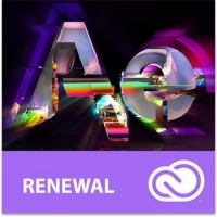 Adobe After Effects CC MP ENG COM RENEWAL L-1 1-9 (12 měsíců)