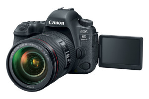 Canon EOS 6D Mark II + EF24-105 IS STM - SELEKCE