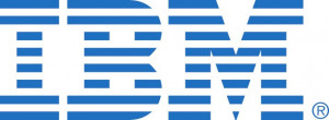 IBM ServeRAID M5200 Series 1GB Cache/RAID 5 Upgrade for IBM Systems