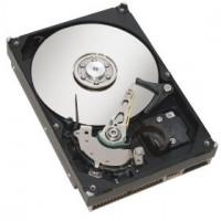 HDD SATA III 2000GB 7.2K pevný disk