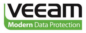 Veeam 1 additional year of maintenance for B&R Ent (V-VBRENT-VS-P01YP-00)