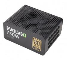 EVOLVEO G750 zdroj 750W, eff 91%, 80+ GOLD, aPFC, modulární, retail (E-G750R)