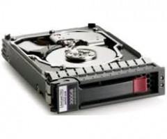 HP Dual Port - pevný disk - 300 GB - SAS 6Gb/s
